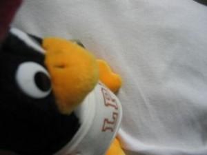 linux_penguin_tux_2005060402